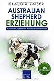 Australian Shepherd Erziehung: Hundeerziehung für Deinen Australian Shepherd Welpen