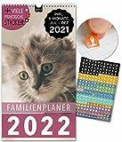 Familienplaner 2022 Kalender: 23x43cm | 5 Spalten | 228 Sticker | KATZEN | Wandkalender, Familienkalender, Monatskalender, Jahresplaner + 6 Mon. Jul-Dez 21, Ferien, Tiere, Cats, süß, niedlich, Fotos