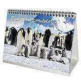 Pinguinzauber DIN A5 Tischkalender für 2021 Pinguin - Seelenzauber