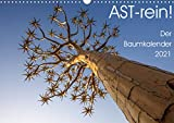 Astrein! - Der Baumkalender 2021 (Wandkalender 2021 DIN A3 quer)
