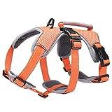 BELPRO Mehrzweck-Hundegeschirr, ausbruchsicher, kein Ziehen, reflektierend, verstellbare Weste mit strapazierfähigem Griff, Hundegeschirr für große/aktive Hunde(Orange, M)