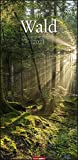 Im Wald XL Kalender 2021