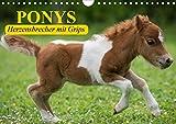 Ponys. Herzensbrecher mit Grips (Wandkalender 2021 DIN A4 quer)