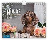 Notizkalender 'Hunde' 2021: 20 x 16 cm