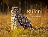 Eulen - weise Jäger der Nacht Kalender 2022, Wandkalender im Querformat (54x42 cm) - Tierkalender / Vogelkalender: Die weisen Jäger der Nacht