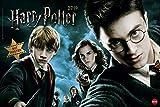 Harry Potter Broschur XL