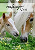 Haflinger Pferde - Stall- und Familienplaner 2021 (Wandkalender 2021 DIN A4 hoch)