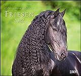 Friesen 2022 – Edle Pferde – Fotografiert von Christiane Slawik – DUMONT-Wandkalender – Format 38,0 x 35,5 cm