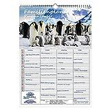 Familienplaner - Pinguinzauber DIN A3 Kalender für 2021 Pinguin - Seelenzauber