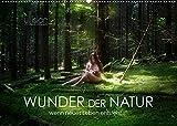 WUNDER DER NATUR - wenn neues Leben entsteht (Wandkalender 2022 DIN A2 quer)