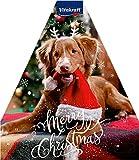 Vitakraft Adventskalender für Hunde 2021, 244 g