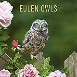 Eulen 2022 - Broschürenkalender 30x30 cm (30x60 geöffnet) - Kalender mit Platz für Notizen - Owls - Bildkalender - Wandplaner - Eulenkalender