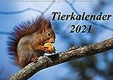 Tierkalender 2021 (Wandkalender 2021 DIN A2 quer)