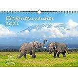 Elefantenzauber DIN A3 Kalender für 2021 Elefanten - Seelenzauber