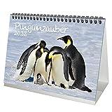 Pinguinzauber DIN A5 Tischkalender für 2022 Pinguin - Seelenzauber