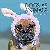 2021 Wandkalender - Hunde als Tiere Kalender, 30 x 30 Zentimeter Monatsansicht, 16-Monat, Haustiere und Tiere Thema, 180 Aufkleber in Englisch Enthält