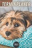 Terminplaner 2021 hund: hunde kalender 2021   Wochenplaner 2021 A5 Planer organizer 2021   Taschenkalender und Terminkalender - Wochenkalender - ... Geschenk männer hundeliebhaber & dogs lovers