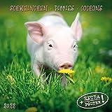 Piggies/Schweinchen 2022: Kalender 2022 (Artwork Media)