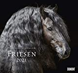Friesen - Kalender 2021 - DuMont-Verlag - Wandkalender - Fotokalender - 37,8 cm x 36 cm