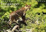 Freigänger - Hauskatzen unterwegs (Tischkalender 2021 DIN A5 quer)