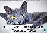 Der Katzenkalender für meinen Schatz (Wandkalender 2021 DIN A3 quer)