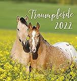 Traumpferde 2022: aufstellbarer Postkartenkalender