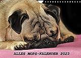 Alles Mops-Kalender 2022 (Wandkalender 2022 DIN A4 quer)