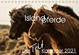 Islandpferde - Der Tölt Kalender (Tischkalender 2021 DIN A5 quer)