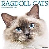 Ragdoll Cats 2021 Calendar