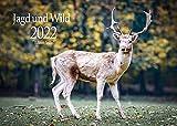 Edition Seidel Jagd und Wild Premium Kalender 2022 DIN A3 Wandkalender Tiere Wald Natur