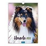 Trötsch Classickalender Hunde 2022: Wandkalender