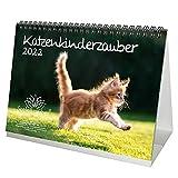 Katzenkinderzauber DIN A5 Tischkalender für 2022 Katzenkinder Katzenbabys - Seelenzauber