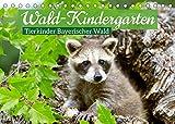 Wald-Kindergarten: Tierkinder Bayerischer Wald (Tischkalender 2022 DIN A5 quer)