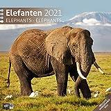 Elefanten 2021, Wandkalender / Broschürenkalender im Hochformat (aufgeklappt 30x60 cm) - Geschenk-Kalender mit Monatskalendarium zum Eintragen