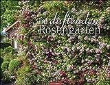 Im duftenden Rosengarten Kalender 2022 - Duft-Kalender - Wandkalender mit internationalem Monatskalendarium - 12 Farbfotos - 44 x 34 cm
