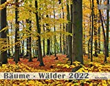 Bäume Wälder Kalender 2022 | Wald Kalender im Großformat (58 x 45,5 cm) | Bäume Kalender | Wälder Kalender: Großformat-Kalender 58 x 45,5 cm