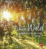 Unser Wald Postkartenkalender 2022 - Kalender mit perforierten Postkarten - zum Aufstellen und Aufhängen - mit Monatskalendarium - 16 x 17 cm: zauberhafter Ort der Kraft