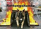 Rettungshunde (Tischkalender 2018 DIN A5 quer): Rettungshunde bei der Arbeit (Monatskalender, 14 Seiten ) (CALVENDO Tiere) [Kalender] [Apr 01, 2017] Mirlieb, Ulf