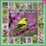 365 Singvögel 2021 - Broschürenkalender - Wandkalender - mit Poster - Format 30 x 30 cm