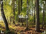 Wald - Gallery Kalender 2022, Wandkalender im Querformat (66x50 cm) - Großformat / Hochwertiger Panorama-Kalender Natur, Wälder und Bäume