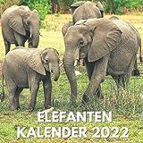 Elefanten Kalender 2022: Ein Waldtiere Kalender 2022 Mit Bildern der Elefanten für Schreibtisch, Büro, Ideal zum Schreiben von Terminen, Geburtstagen, ... ... Ideen für Männer, Frauen, Mädchen, Kinder